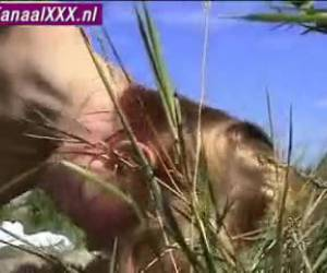 Amateur sex in the dunes