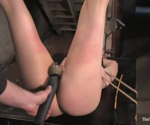 The Training of Dana DeArmond, Day One